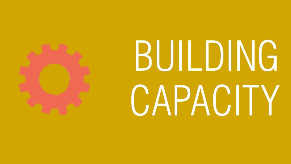 Category: Building capacity